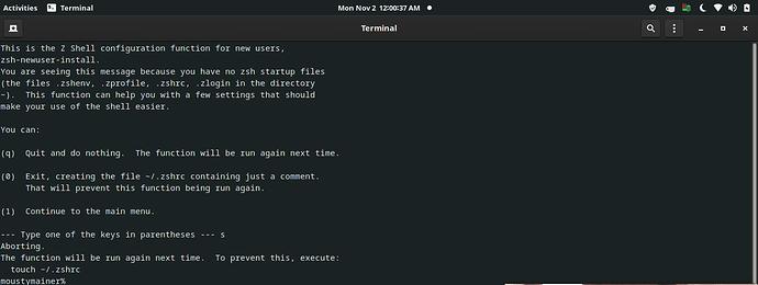 Screenshot from 2020-11-02 00-00-37