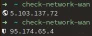 check-network-wan